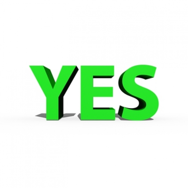 Gaining Yes For Hr Software